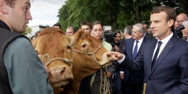 Emmanuel Macron reçoit un millier de jeunes agriculteurs pour le déjeuner ce 22 février 2018.