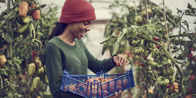 Un retour à une alimentation locale ne peut que générer des prix plus élevés (perte des économies d'échelle) ou une offre plus faible (essayez de trouver des oranges du Québec en épicerie).