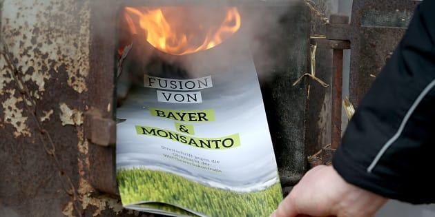 Un manifestant brûle un prospectus lors d'une manifestation contre la fusion du semencier Monsanto et de la société pharmaceutique Bayer à Bonn, en Allemagne.