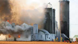 Farm Animals Will Keep Dying If Barn Fire Safety Isn't Taken
