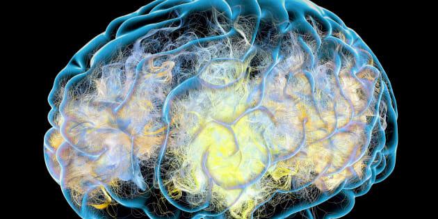 Uno tsunami neurologico