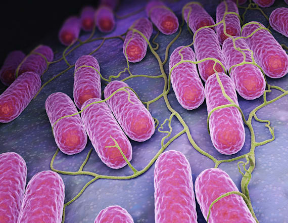 New 'pain-relief' supplement linked to salmonella
