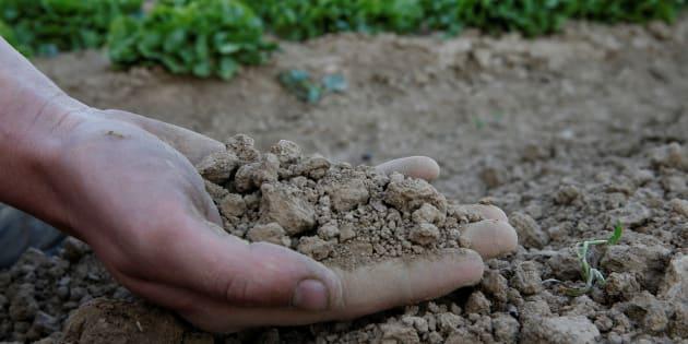 Comment sortir notre agriculture de la crise.