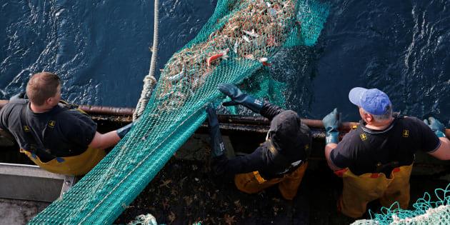 """Les pêcheurs français, comme l'équipage de """"La Fregate III"""" à Boulogne-sur-mer sont inquiets des conséquences d'un Brexit sans accord."""