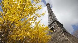 Paris vote l'installation de la