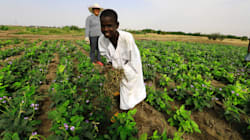 2016 Matriculants Should Consider Agriculture As