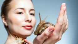 Baba de caracol: lo de moda para el cuidado de la piel, pero ¿en verdad