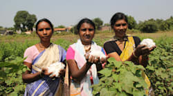 These Vidarbha Women Are Teaching Their Men A Thing Or Two About