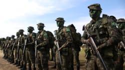 'É ilusão pensar em governo militar como forma de combate à corrupção', diz Dulce