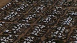 Le RIVO: 25 ans à aider les victimes de violence