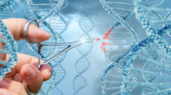Pour la première fois des scientifiques ont modifié l'ADN dans un homme