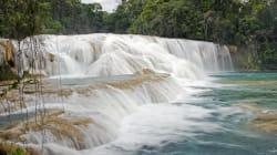 El torrente de las Cascadas de Agua Azul se afectó por