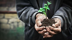 BLOGUE Le pacte de transition écologique comme religion