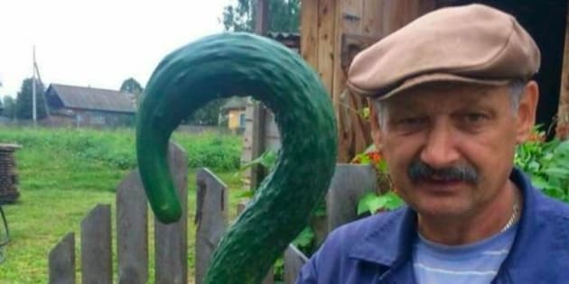 Cet homme qui pose avec un drôle de concombre vaut le détour(nement).