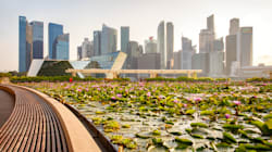 You Don't Have To Be Crazy Rich (Or Asian) To Visit These Singapore