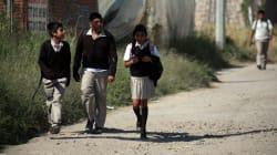 Los alumnos que aspiran a ser maestros... con malas