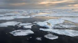 Réchauffement climatique: un cercle vicieux en