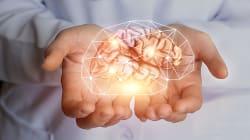 Essere d'esempio, così si cura la lesione nel cervello dei