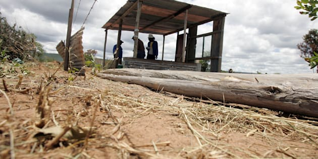 Modimolle residents erect shacks as part of alleged Economic Freedom Fighters' (EFF) expropriation campaign on January 23, 2017 in Modimolle, South Africa.
