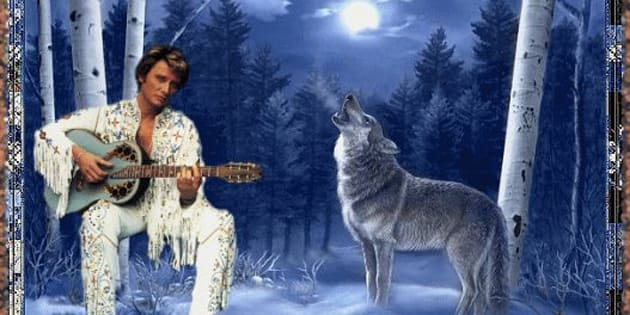 Le loup, l'animal qui colle à la peau de Johnny Hallyday