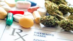 Estudio revela que más personas usan marihuana medicinal en lugar de productos