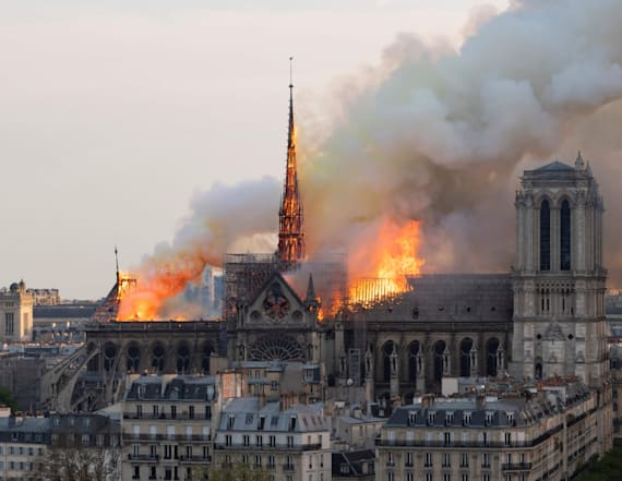 Bees living on Notre Dame roof survived fire