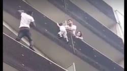 パリで子供を救出した「スパイダーマン」はアフリカ移民だった(動画)