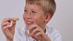 Un traitement contre les allergies aux arachides permet de se protéger contre les ingestions