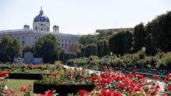 Por que Viena foi eleita a melhor cidade do mundo para