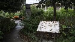 Macron condamne la profanation d'une stèle en mémoire des victimes de la rafle