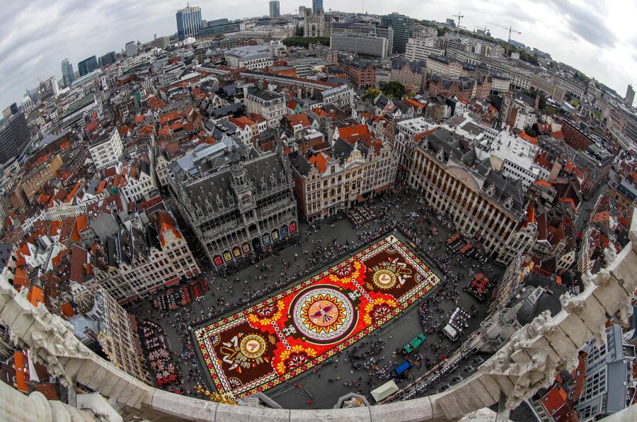 """Una alfombra floral de mil 800 metros cuadrados con el tema """"Guanajuato, orgullo cultural de México"""" y hecha con más de 500 mil dalias y begonias se ve en la Grand Place de Bruselas, Bélgica."""