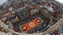 📷 Bruselas llena su plaza central con tapete floral inspirado en