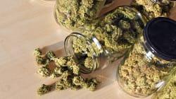 Un Canadien arrêté pour avoir tenté de faire entrer de la marijuana aux