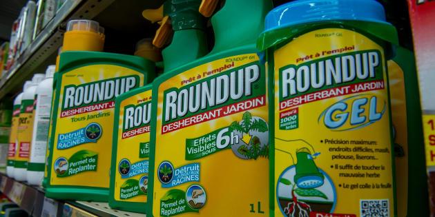 Des résidus de glyphosate retrouvés dans les urines de Delphine Batho ou Emily Loizeau (parmi 30 personnes)