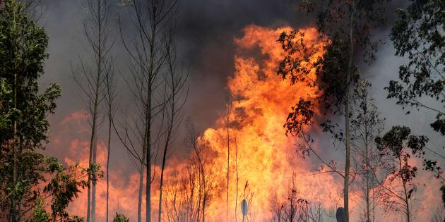 O maior número de vítimas foi registrado na vila de Pedrogão Grande, mas o fogo se alastrou também pelas de Figueiró dos Vinhos e Castanheira de Pera.