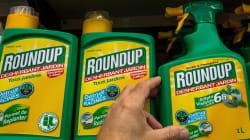 Glyphosate: une famille française porte plainte contre