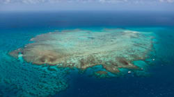 The Great Barrier Reef Could Be Protected By A Giant 'Sun