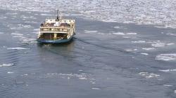 Cinq personnes secourues dans le fleuve Saint-Laurent à