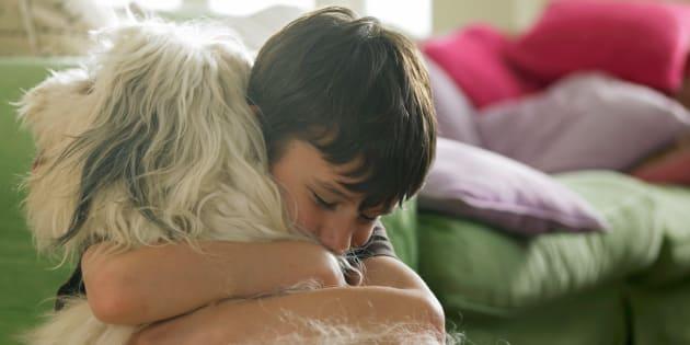 Si le chien est le meilleur ami de l'homme et pas le loup, c'est génétique