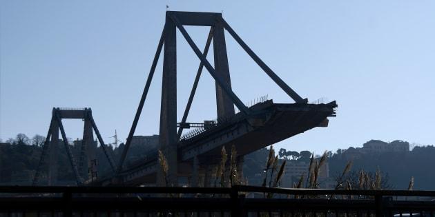 """Stefano Boeri sul nuovo Ponte di Genova. """"Senza monumen"""