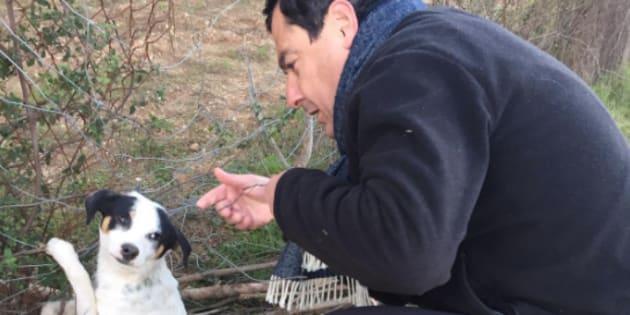 Juanma Moreno Bonilla rescata a un perro abandonado.