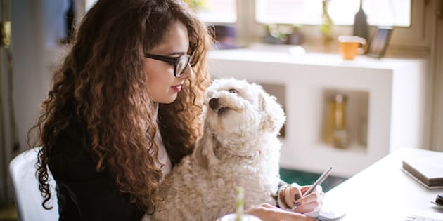 Stylish brunette working from home in her home office and holding her dog in her lap.