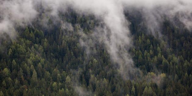Photo Taken In Bolzano - Bozen, Italy