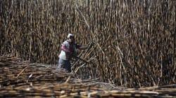 El 'pleito azucarero' entre México y Estados Unidos no da