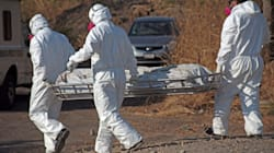 Veracruz en las últimas horas: 244 restos en una fosa clandestina, enfrentamientos y más