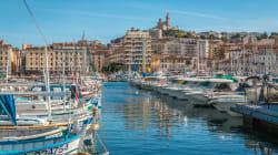 Un dauphin aperçu dans le Vieux-Port de Marseille, un sac plastique sur