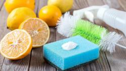 Por que você deveria usar produtos de limpeza veganos no seu dia a