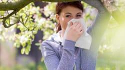 Primavera, consigli per le allergie respiratorie ai