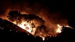 Brucia la California. Almeno 10 morti e 20mila evacuati. Un centinaio di