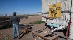 Adiós a lo 'oscurito': INAI instruye a CONAGUA informar sobre planta cervecera en